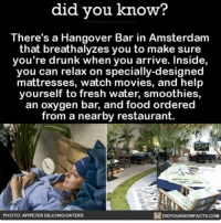 Food, Memes, and Hangover: did you know?  There's a Hangover Bar in Amsterdam  that breathalyzes you to make sure  you're drunk when you arrive. Inside,  you can relax on specially-designed  mattresses, watch movies, and help  yourself to fresh water, smoothies,  an oxygen bar, and food ordered  from a nearby restaurant.  DIDYOUKNOWFACTs.coM  PHOTO  APIPETER DEJONGMCATERS After party ➡️ Hangover Bar funny interesting hangover bars goingout ➡📱Download our free App: [LINK IN BIO]