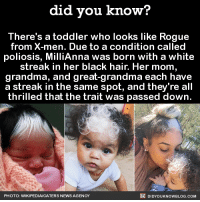 Dank, Grandma, and Jealous: did you know?  There's a toddler who looks like Rogue  from X-men. Due to a condition called  poliosis, MilliAnna was born with a white  streak in her black hair. Her mom,  grandma, and great-grandma each have  a streak in the same spot, and they're all  thrilled that the trait was passed down.  DIDYOUKNOWBLOG.coM  PHOTO: WIKIPEDIACA TERS NEWS AGENCY So jealous of this baby's hair! ⚫⚪  Subscribe and get Did You Know(s) texted directly to you ➡ https://fact-snacks.com