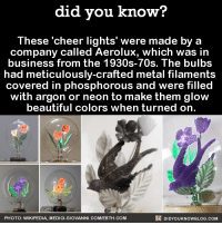 Looks relaxing 😎  Want more Did You Know(s)? ➡ 📓 Buy our book on Amazon: http://amzn.to/2eNRlj1 ➡📱 Get text message alerts: http://fact-snacks.com ➡ 📩  Free email newsletter: http://goo.gl/iRFFE7: did you know?  These cheer lights' were made by a  company called Aerolux, which was in  business from the 1930s-70s. The bulbs  had meticulously-crafted metal filaments  covered in phosphorous and were filled  with argon or neon to make them glow  beautiful colors when turned on.  DIDYouK Now BLOG coM  PHOTO: WIKIPEDIA, MEDICI-GIOVANNI. COM/EBTH  COM Looks relaxing 😎  Want more Did You Know(s)? ➡ 📓 Buy our book on Amazon: http://amzn.to/2eNRlj1 ➡📱 Get text message alerts: http://fact-snacks.com ➡ 📩  Free email newsletter: http://goo.gl/iRFFE7