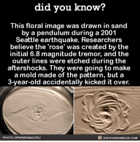 """This is why we can't have nice things!  Want more Did You Know's? Sign-up below... ➡ Text message alerts: http://fact-snacks.com ➡ Email: http://goo.gl/iRFFE7: did you know?  This floral image was drawn in sand  by a pendulum during a 2001  Seattle earthquake. Researcher  believe the rose"""" was created by the  initial 6.8 magnitude tremor, and the  outer lines were etched during the  aftershocks. They were going to make  a mold made of the pattern, but a  3-year-old accidentally kicked it over.  DIDYouK Now BLOG coM  PHOTO: APS/INDIANA. EDU This is why we can't have nice things!  Want more Did You Know's? Sign-up below... ➡ Text message alerts: http://fact-snacks.com ➡ Email: http://goo.gl/iRFFE7"""