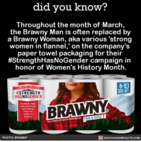 """Memes, 🤖, and Links: did you know?  Throughout the month of March,  the Brawny Man is often replaced by  a Brawny Woman, aka various """"strong  women in flannel,"""" on the company's  paper towel packaging for their  #Strength HasNoGender campaign in  honor of Women's History Month.  STRENGTH  HASNOGENDER  BRAWNY  PHOTO: BRAWNY  DIDYOUKNOWFACTS.COM Happy International Women's Day! 💃🏾💁🏻 strong women womensrights internationalwomensday ➡📱Download our free App: [LINK IN BIO]"""