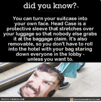 Amazon, Apple, and Facebook: did you know?  TM  You can turn your suitcase into  your own face. Head Case is a  protective sleeve that stretches over  your luggage so that nobody else grabs  it at the baggage claim. It's also  removable, so you don't have to roll  into the hotel with your bag staring  down everyone in the lobby  unless you want to.  DIDYOUKNOWFACTS.coM  PHOTO: FIREBOX.COM No judgement here. 🤗🙌🏻 headcase travel suitcase funny 📢 Share the knowledge! Tag your friends in the comments. ➖➖➖➖➖➖➖➖➖➖➖ Want more Did You Know(s)? ➡📓 Buy our book on Amazon: [LINK IN BIO] ➡📱 Download our App: http:-apple.co-2i9iX0u ➡📩 Get daily text message alerts: http:-Fact-Snacks.com ➡📩 Free email newsletter: http:-DidYouKnowFacts.com-Sign-Up- ➖➖➖➖➖➖➖➖➖➖➖ We post different content across our channels. Follow us so you don't miss out! 📍http:-facebook.com-didyouknowblog 📍http:-twitter.com-didyouknowfacts ➖➖➖➖➖➖➖➖➖➖➖ DYN FACTS TRIVIA TIL DIDYOUKNOW NOWIKNOW