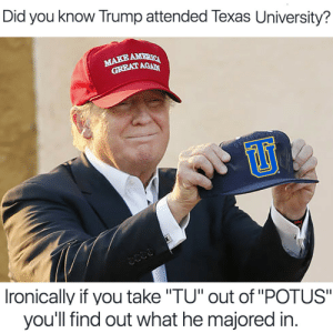 "College, Tumblr, and Blog: Did you know Trump attended Texas University?  AGAN  242-3  Ironically if you take ""TU"" out of ""POTUS""  you'll find out what he majored in awesomesthesia:  Where did Trump go to college?"
