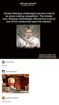 Asian, Disney, and Facebook: did you know?  tumbir.com  Gordon Ramsay challenged a prison cook to  an onion cutting competition. The inmate  won. Ramsay immediately offered him a job at  one of his restaurants upon his release.  did-you-kno.tumblr.com  com  facebook.com/didyouknowblog  did-you-kno  didyoukno  Source  the-asian camel  Horst has done time.  What for?  graceful-headdesk  OH MY GOD Wow... - Alternative Disney
