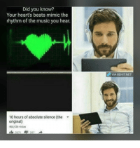 "Memes, Music, and Beats: Did you know?  Your heart's beats mimic the  rhythm of the music you hear  d VIA 8SHITNET  10 hours of absolute silence (the  original)  460.,436 vistas <p>XD via /r/memes <a href=""http://ift.tt/2rB4UWf"">http://ift.tt/2rB4UWf</a></p>"