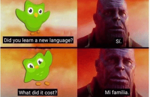 meirl: Did you learn a new language?  Sí.  What did it cost?  Mi familia. meirl