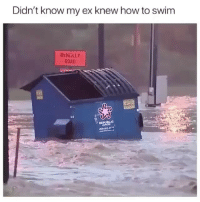 Memes, How To, and 🤖: Didn't know my ex knew how to swim  McNEILLY  ROAD  0 Who knew 😏 Follow @confessionsofablonde @confessionsofablonde @confessionsofablonde