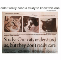 Study: cats are assholes who withhold love, take deep pleasure in your pain and suffering, and, as a reward for providing them shelter and care, will scratch you at will iLikeLadiesWithFelineTraits ScornMe DebaseMe MyBodyIsReady 😍😂😂😂: didn't really need a study to know this one.  DrSmashlove  2 The Columbianl YOUR WEEK  212tosubscribe, or log onto  Arecent study has confirmed what cat owners have long known: cats understand when spoken to, but they choose to  most of what people say.  Study: Our cats understand  us, but they don't really care  By KATHY ANTONIOTTI  A study by two Univer  stressa moving them to bred and have evolved to  Abon Beacon RMmal  of Tokyo researchers,  strange surroundings had folow their owner's Tbe agums of unrequited  published by Springerin normie in the outoome but cats have potbeet. Study: cats are assholes who withhold love, take deep pleasure in your pain and suffering, and, as a reward for providing them shelter and care, will scratch you at will iLikeLadiesWithFelineTraits ScornMe DebaseMe MyBodyIsReady 😍😂😂😂