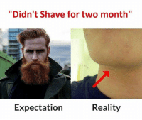 """Beard, Memes, and 🤖: """"Didn't Shave for two month""""  Expectation  Reality Tag someone who can't grow a beard"""