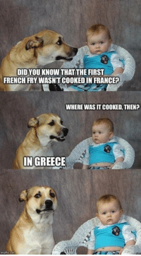 Facts, France, and Greece: DIDYOU KNOW THAT THE FIRST  FRENCH FRY WASNT COOKED IN FRANCE?  WHERE WAS IT COOKED, THEN?  IN GREECE Facts