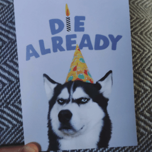Birthday, Cute, and Party: DIE  ALREADY  SAMICA My 4 year old niece cant read and bought me this birthday card because it featured a cute dog with a party hat