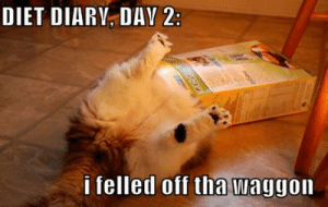Dieting, Meme, and Diet: DIET DIARV, DAY 2:  i felled off tha waggon dieting meme 2 - Viral Uproar