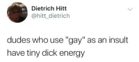 "tiny dick: Dietrich Hitt  @hitt_dietrich  dudes who use ""gay"" as an insult  have tiny dick energy"