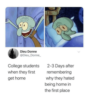 i lOve GOiNg BaCK hOMe (via /r/BlackPeopleTwitter): Dieu Donne  @Dieu_Donne_  2-3 Days after  remembering  College students  when they first  why they hated  being home in  the first place  get home i lOve GOiNg BaCK hOMe (via /r/BlackPeopleTwitter)