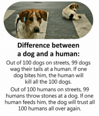 Anaconda, Dogs, and Memes: Difference between  a dog and a human:  Out of 100 dogs on streets, 99 dogs  wag their tails at a human. If one  dog bites him, the human will  kill all the 100 dogs.  Out of 100 humans on streets, 99  humans throw stones at a dog. If one  human feeds him, the dog will trust all  100 humans all over again.