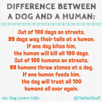 TheDesiStuff dogs dogsofinsta dog Mumbai Delhi Kerala Bangalore Ahmedabad: DIFFERENCE BETWEEN  A DOG AND A HUMANE  Out of 100 dogs on streets,  99 dogs wag their tails at a human.  If one dog bites him,  the human will kill all 100 dogs.  Out of 100 humans on streets,  99 humans throw stones at a dog  If one human feeds him,  the dog will trust all 100  humans all over again.  via: Dog Lovers India  @The Desi Stuff TheDesiStuff dogs dogsofinsta dog Mumbai Delhi Kerala Bangalore Ahmedabad
