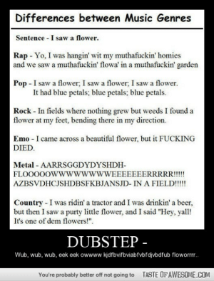 """[Connect to Facebook to view this post]http://omg-humor.tumblr.com: Differences between Music Genres  Sentence - I saw a flower.  Rap - Yo, I was hangin' wit my muthafuckin' homies  and we saw a muthafuckin' flowa' in a muthafuckin' garden  Pop - I saw a flower, I saw a flower; I saw a flower.  It had blue petals; blue petals; blue petals.  Rock - In fields where nothing grew but weeds I found a  flower at my feet, bending there in my direction.  Emo - I came across a beautiful flower, but it FUCKING  DIED.  Metal - AARRSGGDYDYSHDH-  FLOOO0OWwwwwwwWEEEEEEERRRRR!!!!  AZBSVDHCJSHDBSFKBJANSJD- IN A FIELD!!!!  Country - I was ridin' a tractor and I was drinkin' a beer,  but then I saw a purty little flower, and I said """"Hey, yall!  It's one of dem flowers!"""".  DUBSTEP -  Wub, wub, wub, eek eek owwww kjdfbvifbviabfvbfdjvbdfub floworrr.  TASTE OF AWESOME.COM  You're probably better off not going to [Connect to Facebook to view this post]http://omg-humor.tumblr.com"""