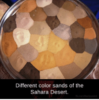 Memes, 🤖, and Desert: Different color sands of the  Sahara Desert.  fb.com/facts Weird