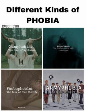 : Different Kinds of  PHOBIA  @vooniesm  acophobia:  he fear of uglines  LYSSOPHOBIA  fear of going insane or mad  - va (Quotes 'nd Notes)  MYPHOBIA  Phobophobia:  The fear of fear itself.  THe Fear OF LOSING BTS  wordables  900