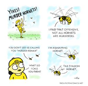 different types of hornets: different types of hornets