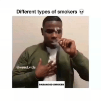 Memes, Weed, and 🤖: Different types of simokers  @weed.vids  PARANOID SMOKER