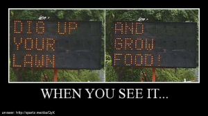 when you see it…http://meme-rage.tumblr.com: DIG UP  YOUR  LAWN  ANDO  GROW  FOODL  WHEN YOU SEE IT...  answer: http://spartz.me/dia/Oyx when you see it…http://meme-rage.tumblr.com
