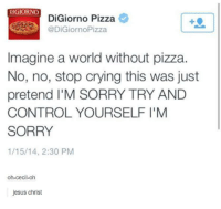 Digiorno Pizza: DIGIORNO  DiGiorno Pizza  DiGiorno Pizza  Imagine a world without pizza.  No, no, stop crying this was just  pretend l'M SORRY TRY AND  CONTROL YOURSELF I'M  SORRY  1/15/14, 2:30 PM  oh-cecil-oh  jesus christ