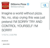 Digiorno Pizza: DIGIORNO  DiGiorno Pizza  @DiGiorno Pizza  Imagine a world without pizza.  No, no, stop crying this was just  pretend M SORRY TRY AND  CONTROLYOURSELFIM  SORRY  1/15/14, 2:30 PM  oh-cecil-oh  jesus christ