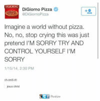 Digiorno Pizza: DIGIORNO  DiGiorno Pizza e  @DiGiornoPizza  Imagine a world without pizza.  No, no, stop crying this was just  pretend I'M SORRY TRY AND  CONTROL YOURSELF I'M  SORRY  1/15/14, 2:30 PM  oh-cecil-oh  jesus christ  f Postize