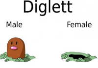 Hue hue. If you know what I mean.: Diglett  Male  Female Hue hue. If you know what I mean.