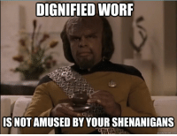 Dignified Worf: DIGNIFIED WORF  IS NOT AMUSED BY YOUR SHENANIGANS  quick meme com Dignified Worf