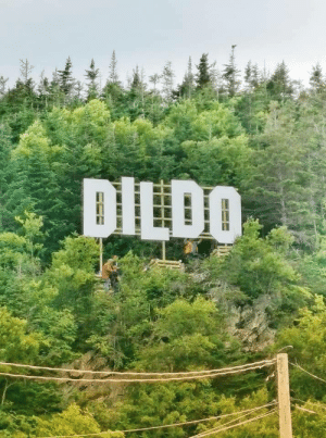 Dildo, Canada, and The Town: DILDO The town of Dildo, Newfoundland, Canada just erected a new sign.