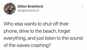 Dank, Phone, and Waves: Dillon Brelsford  @dpbrelsford  Who else wants to shut off their  phone, drive to the beach, forget  everything, and just listen to the sound  of the waves crashing? Lets go right now