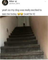 Funny, Twitter, and Yeah: Dillon  @Dillon_Bmx  yeah so my dog was really excited to  see me today (wait for it) Lmaooo 👉🏽(via: Dillion_bmx-Twitter)