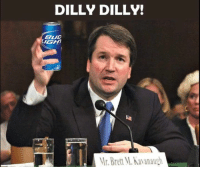 Conservative, Bud, and Brett: DILLY DILLY!  BUD  IGH  Mr.Brett M.Kavanaugh And that's a Dilly Dilly!