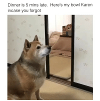 Funny, Bowl, and You: Dinner is 5 mins late. Here's my bowl Karen  incase you forgot Get it together Karen😅 VidVia @goalsociiety