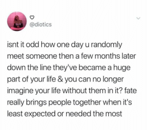 It is amazing: @diotics  isnt it odd how one day u randomly  meet someone then a few months later  down the line they've became a huge  part of your life & you can no longer  imagine your life without them in it? fate  really brings people together when it's  least expected or needed the most It is amazing