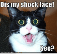 Shocked Face Meme: Dis may shock face!  See  ICANHASCHEEZEURGER.