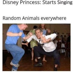 disney princess: Disney Princess: Starts Singing  Random Animals everywhere