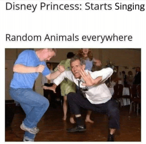 Wild animals appearing from everywhere.: Disney Princess: Starts Singing  Random Animals everywhere Wild animals appearing from everywhere.