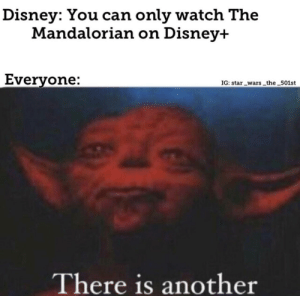 What about the streaming attack and n Disney+: Disney: You can only watch The  Mandalorian on Disney+  Everyone:  IG: star _wars the 501st  There is another What about the streaming attack and n Disney+