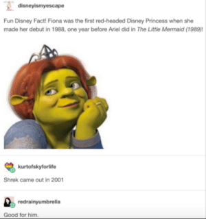 Ariel, Disney, and Shrek: disneyismyescape  Fun Disney Fact! Fiona was the first red-headed Disney Princess when she  made her debut in 1988, one year before Ariel did in The Little Mermaid (1989)!  kurtofskyforlife  Shrek came out in 2001  redrainyumbrella  Good for him When Shrek made his debut