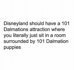 Disneyland, Memes, and Puppies: Disneyland should have a 101  Dalmations attraction where  you literally just sit in a room  surrounded by 101 Dalmation  puppies Yes!