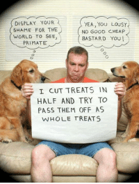 For More Hit (Y) Dirty Humor OR Unlawful jokes: DISPLAY YOUR  YEA, YOU LOUSY  SHAME FOR THE  NO GOOD CHEAP  WORLD TO SEE  BASTARD YOU  PRIMATE  I CUT TREATS IN  HALF AND TRY TO  PASS THEM OFF AS  WHOLE TREATS For More Hit (Y) Dirty Humor OR Unlawful jokes