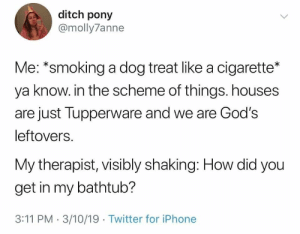 : ditch pony  @molly7anne  Me: *smoking a dog treat like a cigarette*  ya know. in the scheme of things. houses  are just Tupperware and we are God's  leftovers.  My therapist, visibly shaking: How did you  get in my bathtub?  3:11 PM 3/10/19 Twitter for iPhone