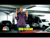 Scream, The Voice, and Alarm: DIVA SCREAM <p>If you&rsquo;re in the market for a car alarm, look no further than the voice of legendary comedian Michael Winslow. Seriously.</p>