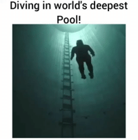 Memes, Pool, and Single: Diving in world's deepest  Pool! Diving to the bottom of the world's deepest pool on a single breath🏊 Follow via 📹@guillaumenery