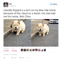 Bok: DK  @DKisfake  Follow  Literally flipped a u-turn on my bike ride home  because of this cloud on a leash. His dad told  me his name, Bok Choy  RETWEETS L  LIKES  19,580 34,898  *I  12:30 pm -17 Jun 2016  20K35K