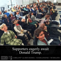 DMCA Supporters eagerly await  Donald Trump.  GORILLA PIGTM. ALLRIGHTS RESERVED. IFB/GORILLAPIGSPAGE ITW/GORILLAPIG 1 Supporters eagerly await #DonaldTrump!!!  #Trump2016  #DonTheCon  #p2  #tcot  #GorillaPig1 ©Gorilla Pig™. All rights reserved.