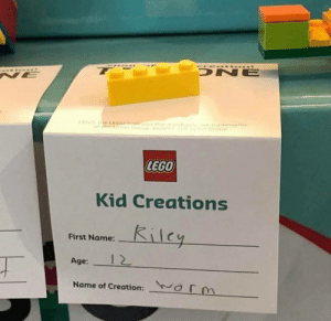 Lego, Creation, and Name: DNE  NE  LEGO  Kid Creations  Kilcy  First Name:  12  Age:  orm  Name of Creation: Kid's going places!